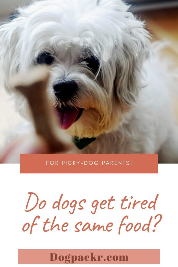 Do dogs get tired of the same food?