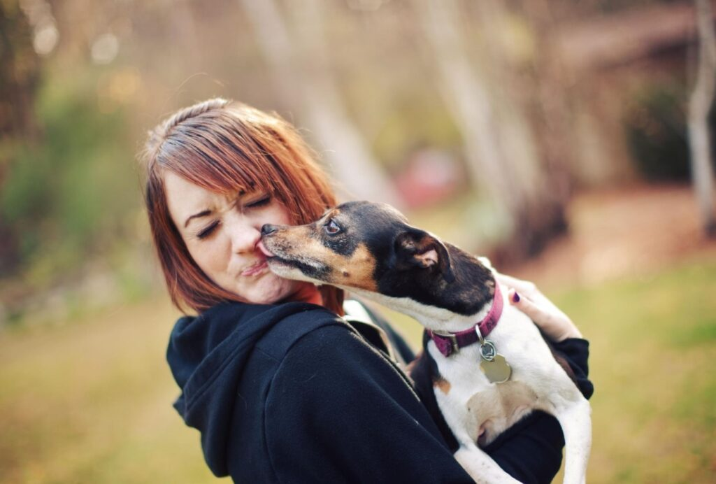 Why do dogs lick you?