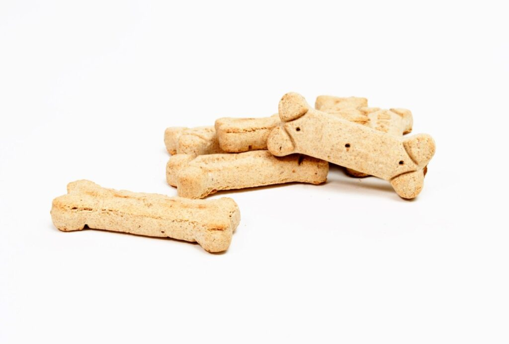 Toss some treats around to help your dog build positive associations with being close to you