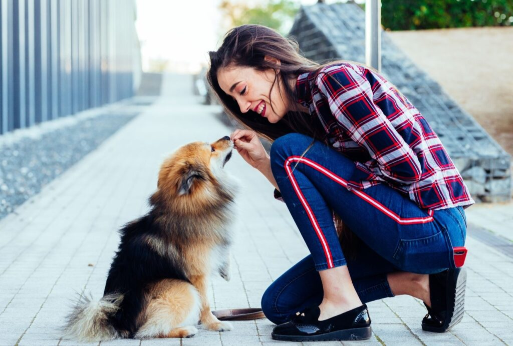 What is positive reinforcement training